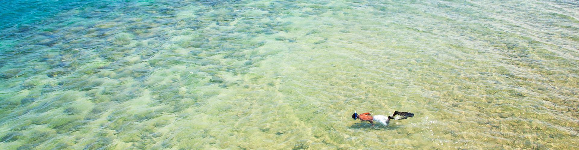 snorkelling quirimbas archipelago