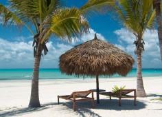 Medjumbe Beach Umbrellas & Loungers