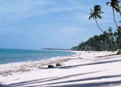 Guludo Beach Lodge Shoreline