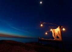 Nkwichi Lodge Star Bed At Night