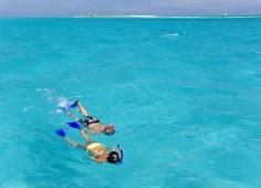Medjumbe Snorkelling