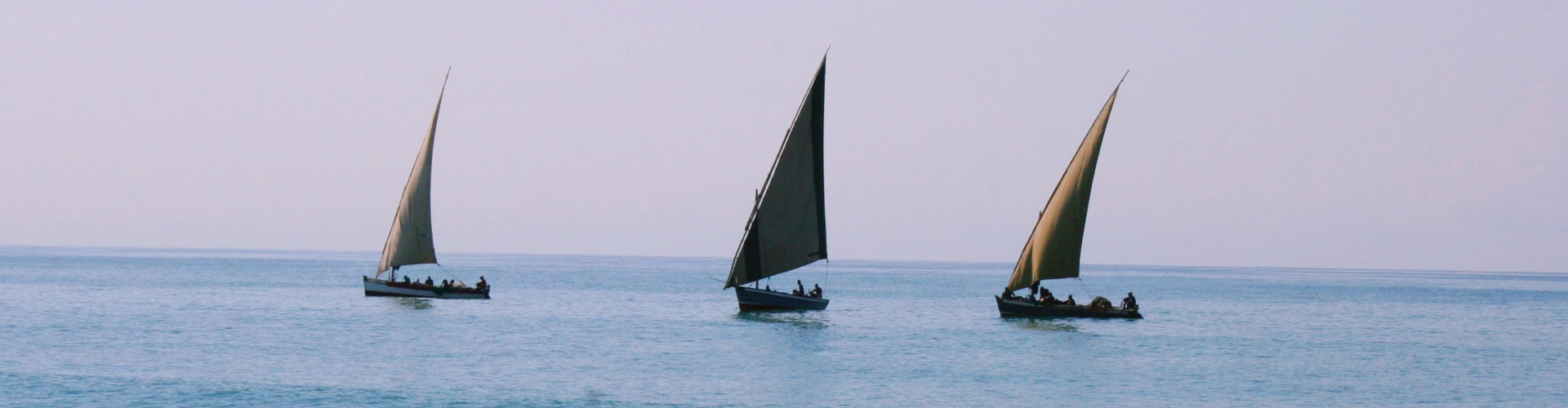 Ocean Sailing Dhow at Dawn