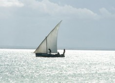Ulala Lodge Sailing