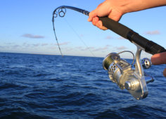 Colina Verde fishing
