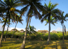 Travessia Beach Lodge Palmgroves